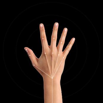 Maestro™ Hand Gesture Technology