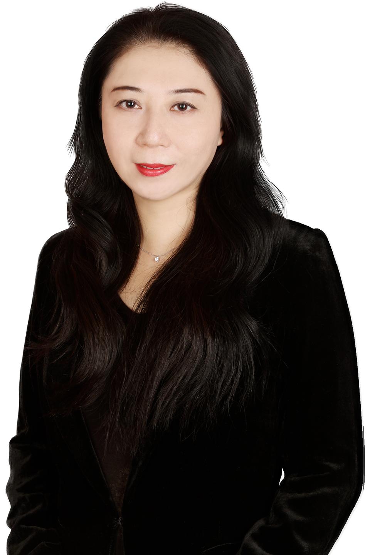 Han Jie